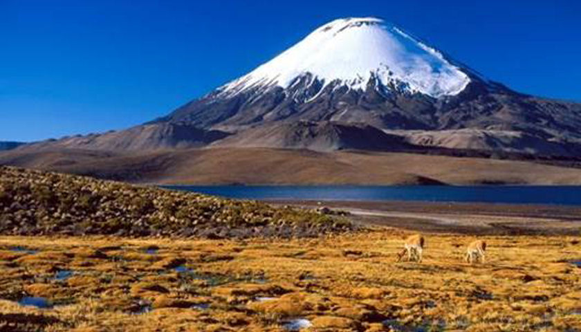 Chungara Lake and Parinacota Volcano