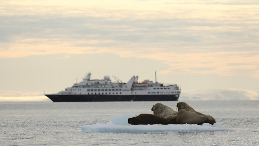 Silversea Expeditions Matthew Scott