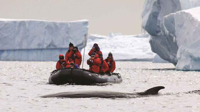 Antarctica - Photo copyright Richard Sidey