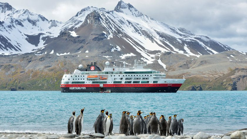 Hurtigruten penguins in Antarctica